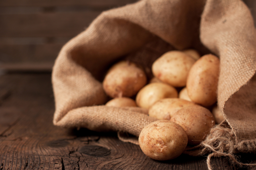 Harvest potatoes in burlap sack on rustic background