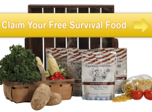 free-food-carousel-5