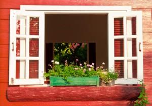 window with flower box