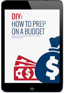 phq-report-prep-on-a-budget